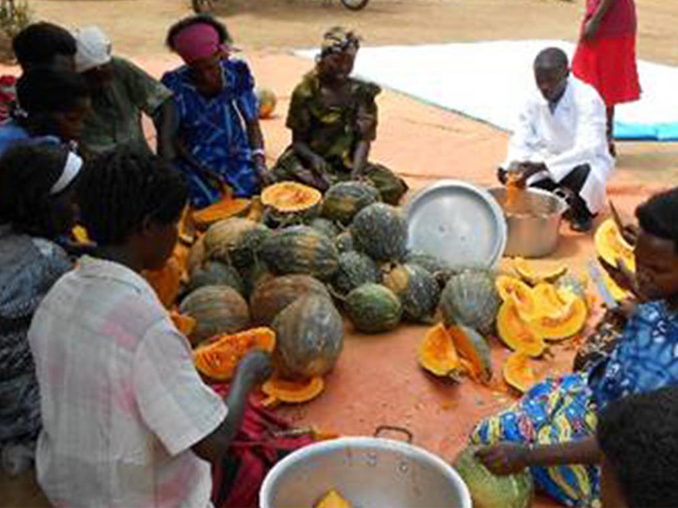 Women's Empowerment in Pumpkin Value Addition